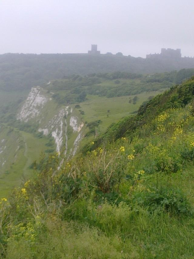 Fog on the Cliffs