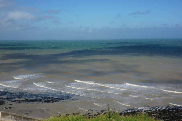 whote cliffs ocean